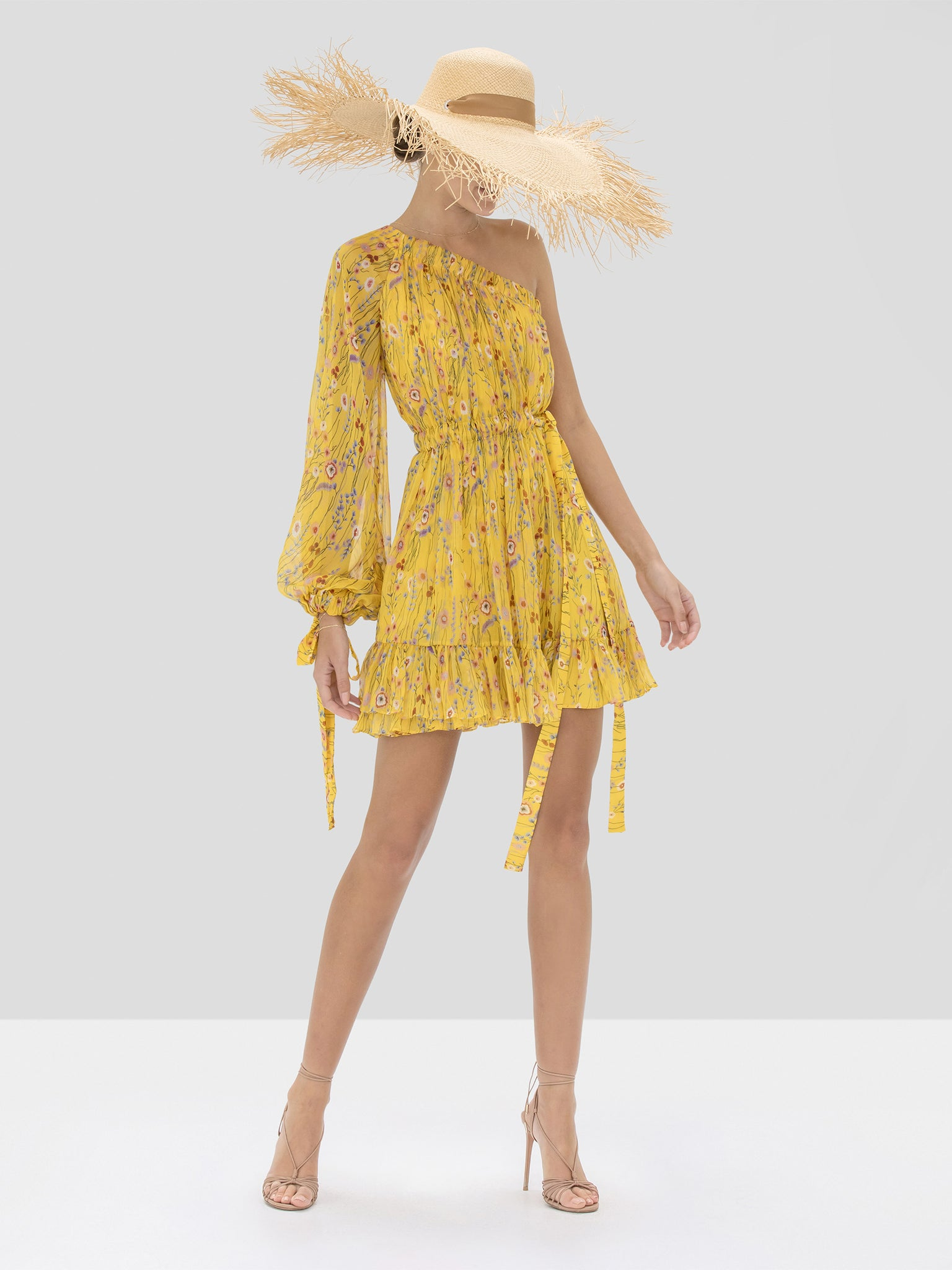 Alexis Edyta Dress in Sunrise Bouquet from Spring Summer 2020