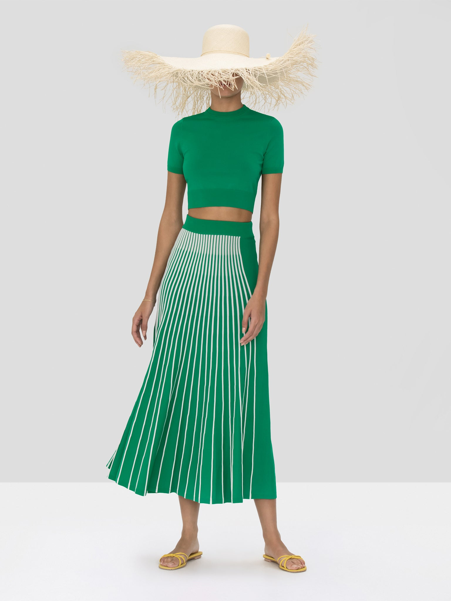 Alexis Vani Skirt in Green and White Stripes and Finzi Crop Top in Green from Spring Summer 2020