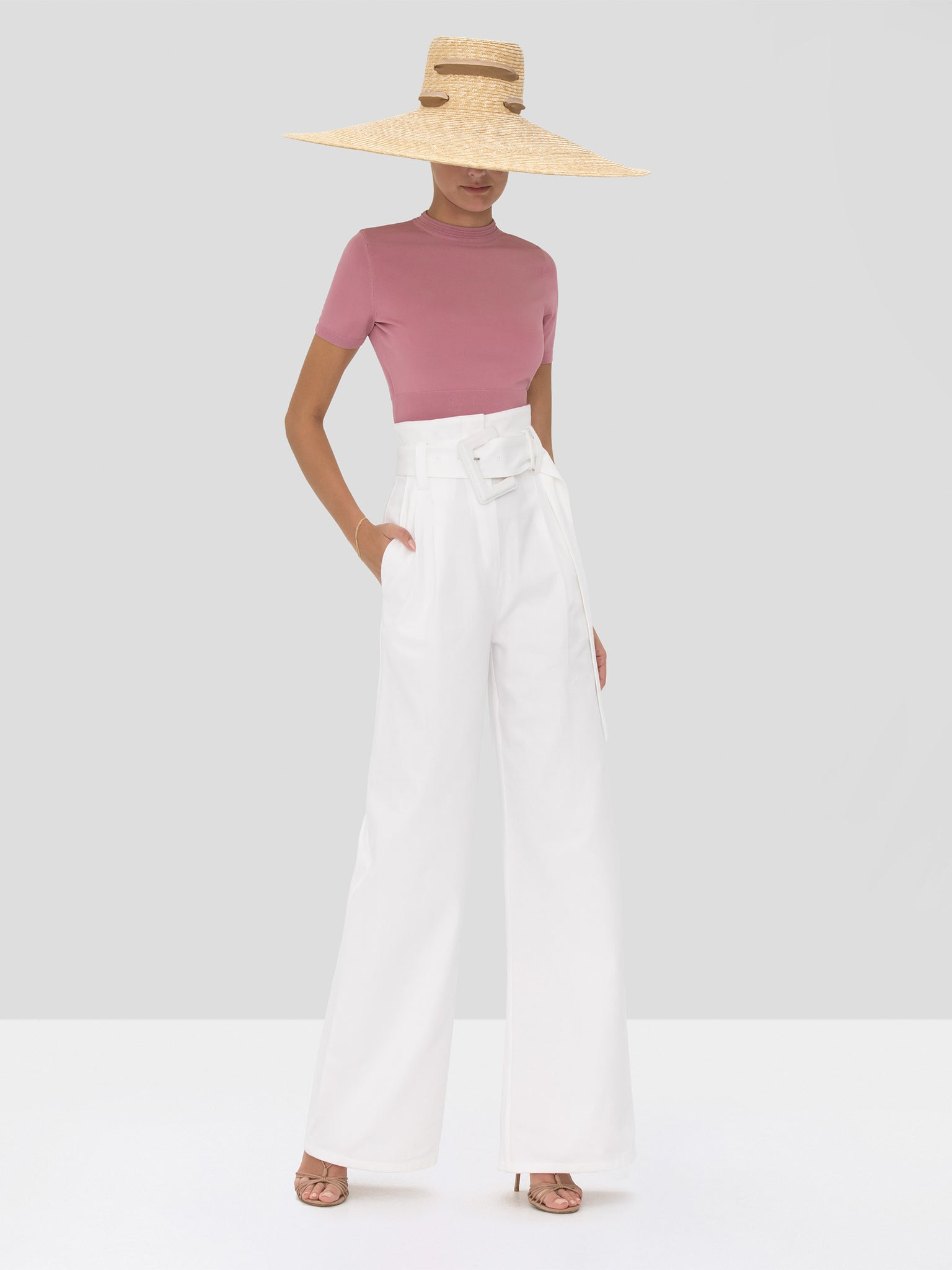 Alexis Finzi Crop Top in Dusty Rose from the Spring Summer 2020 Collection