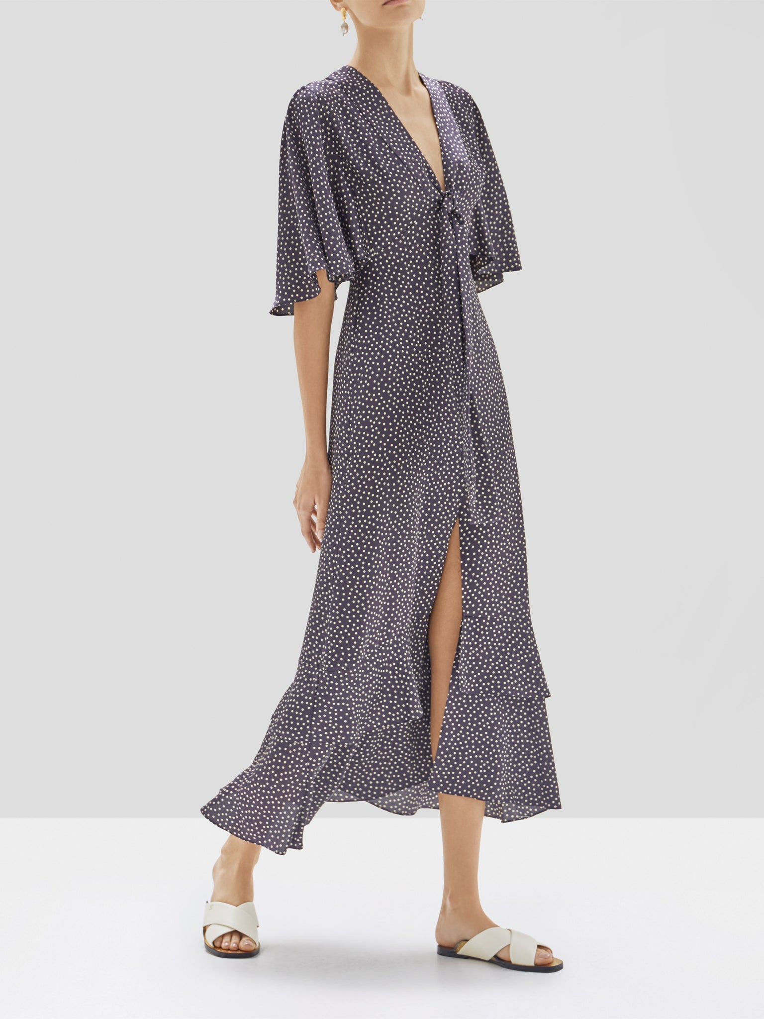 Alexis Kasany Dress in Navy and Beige Dot from the Pre Spring 2020 Collection