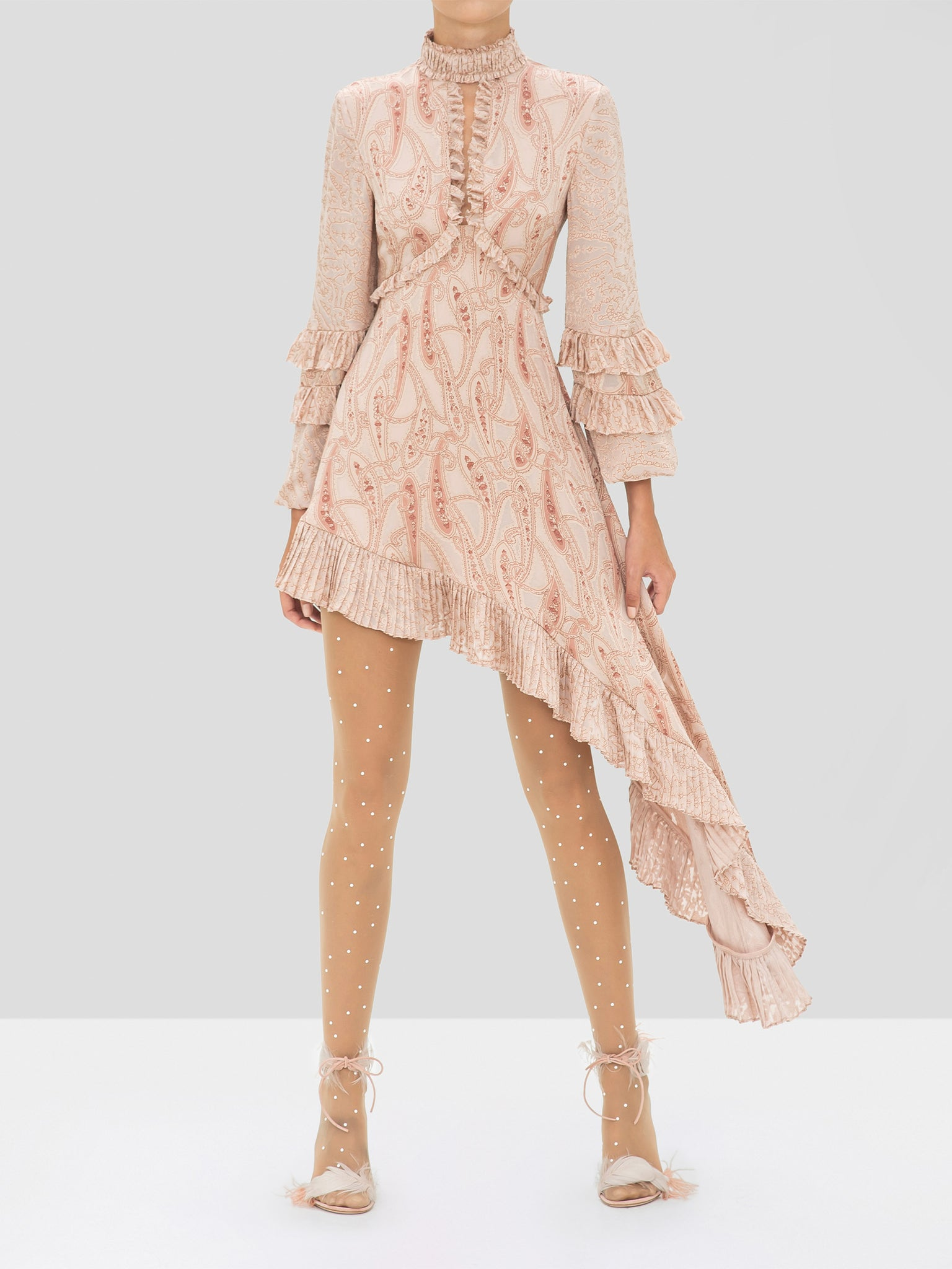 Alexis Liora Dress in Blush Paisley from the Holiday 2019 Ready To Wear Collection