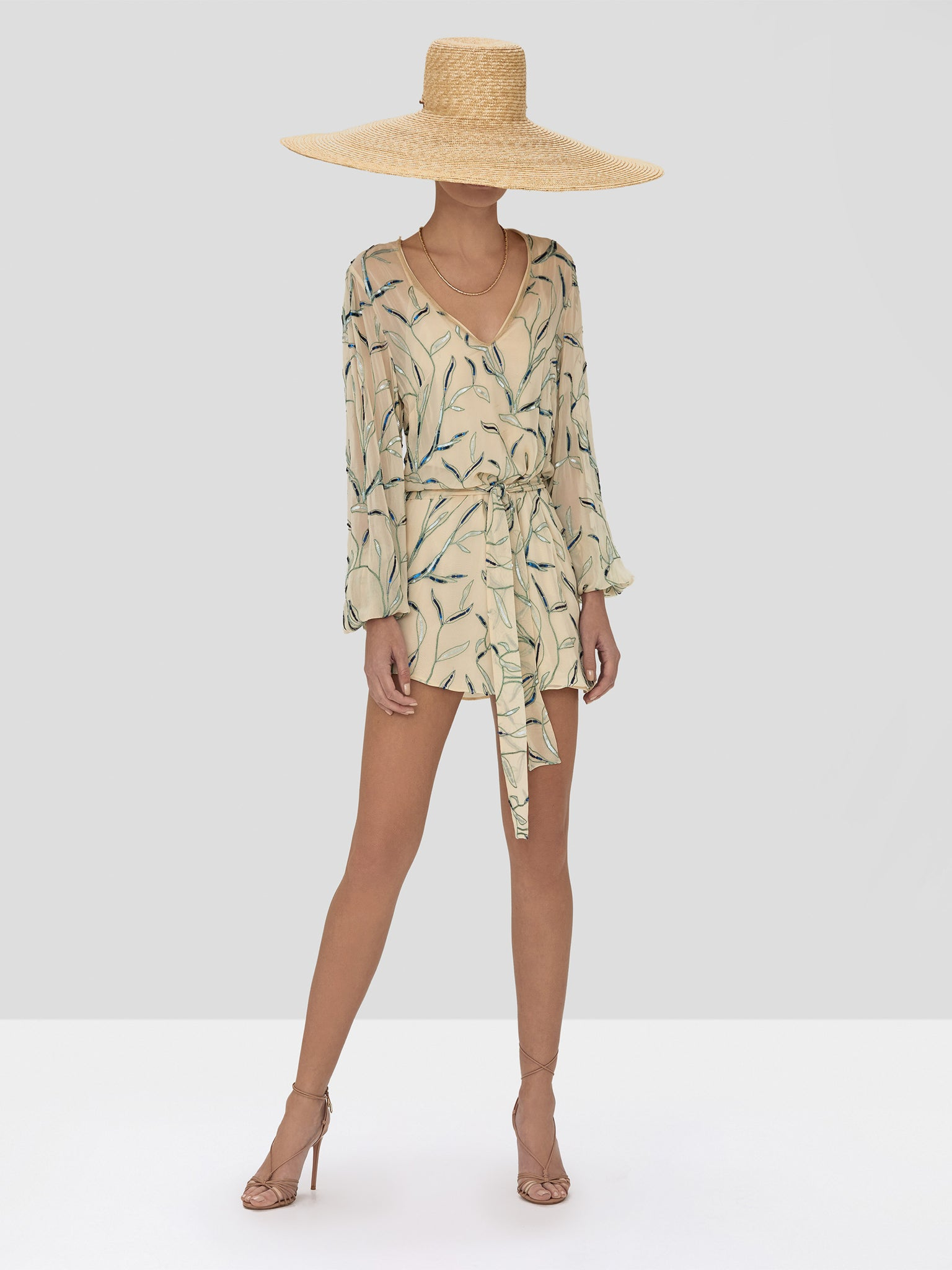 Alexis Lujana Dress in Tan Sequin Embroidery from the Spring Summer 2020 Collection