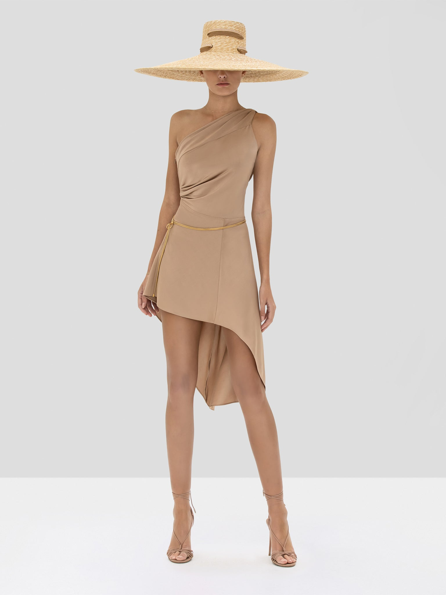 Alexis Mellie Dress in Tan from the Spring Summer 2020 Collection