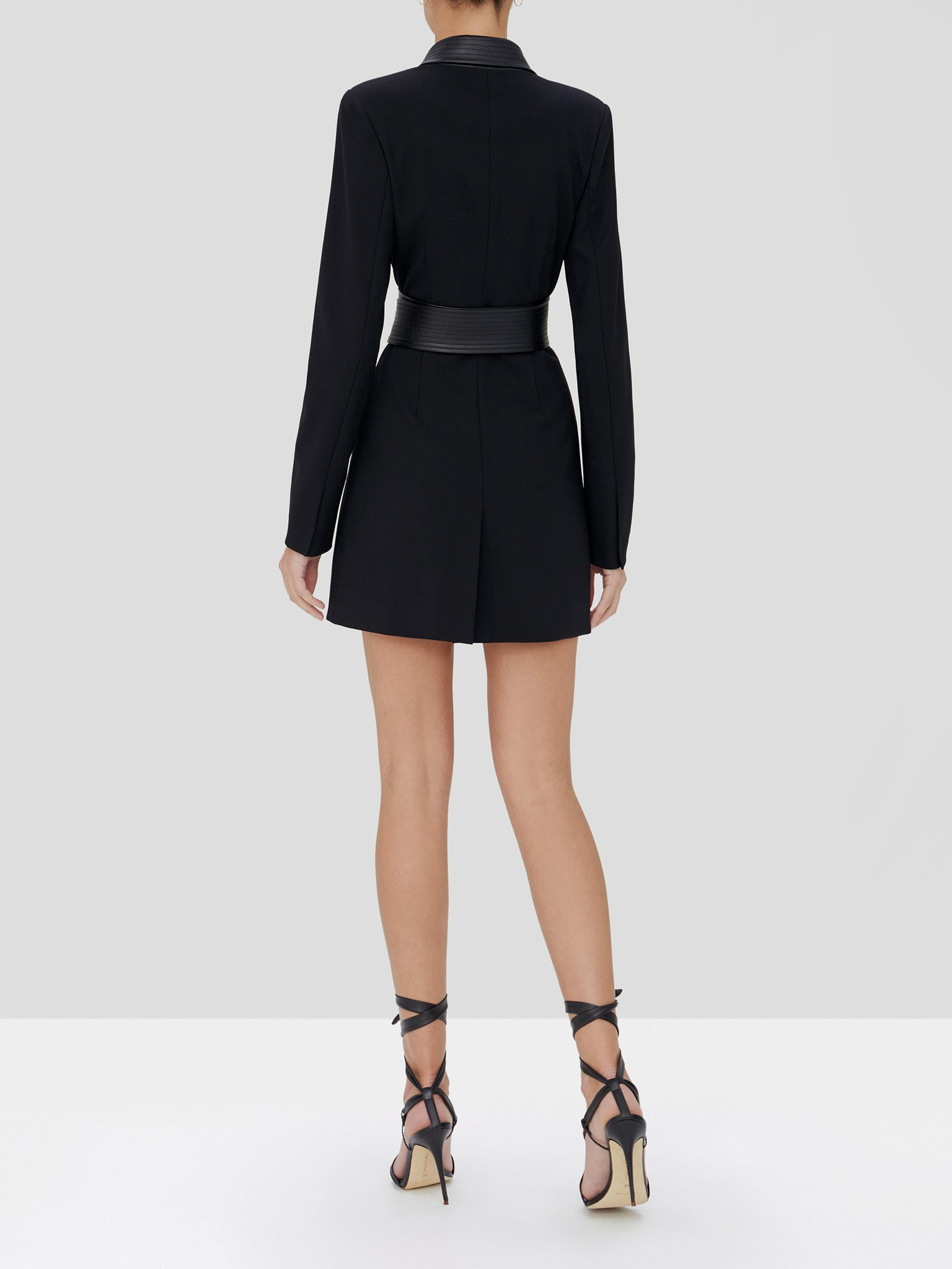 Rachel blazer dress in black - Rear View