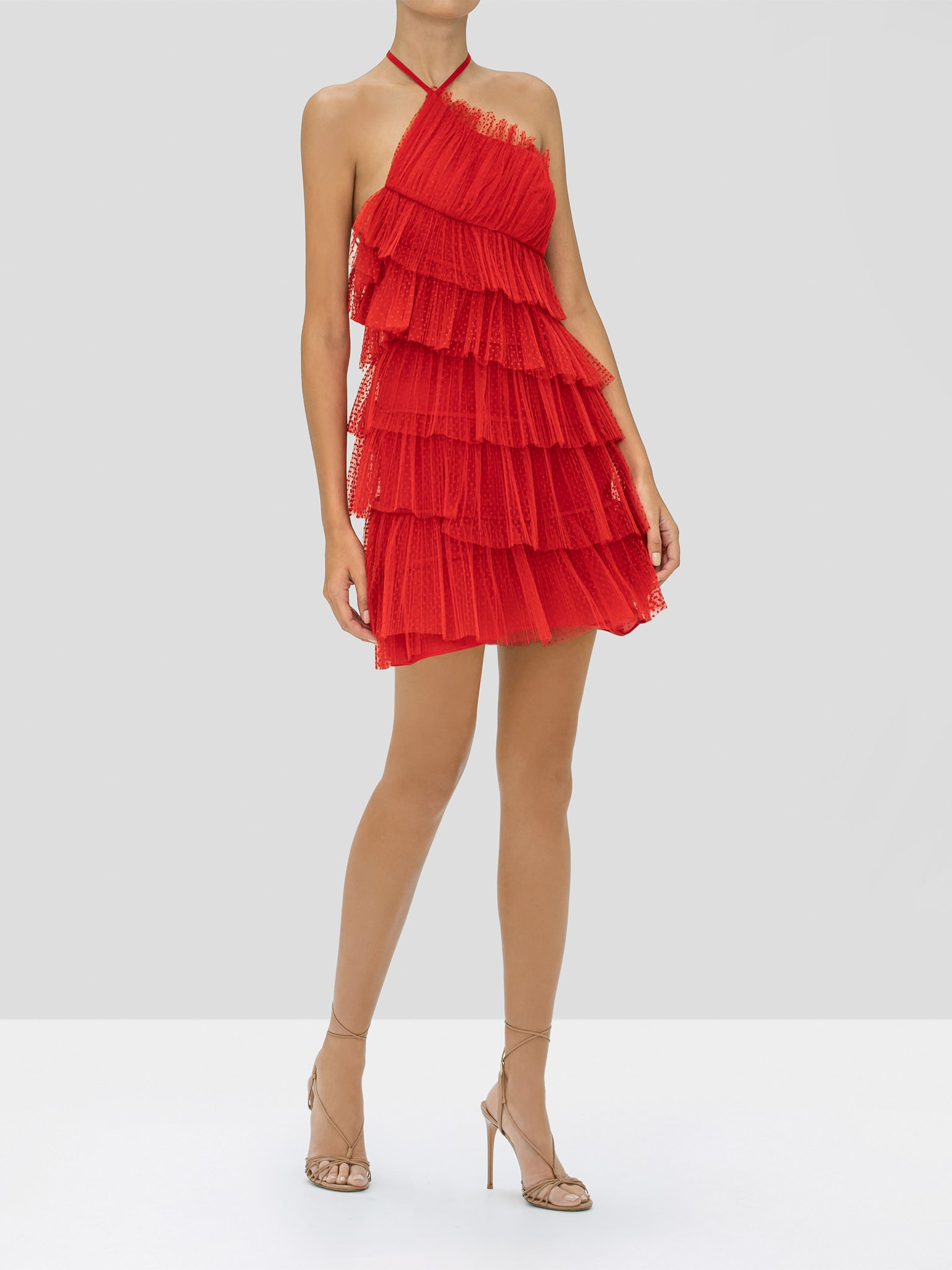 Alexis Raina Dress in Cherry from our Holiday 2019 Ready To Wear Collection