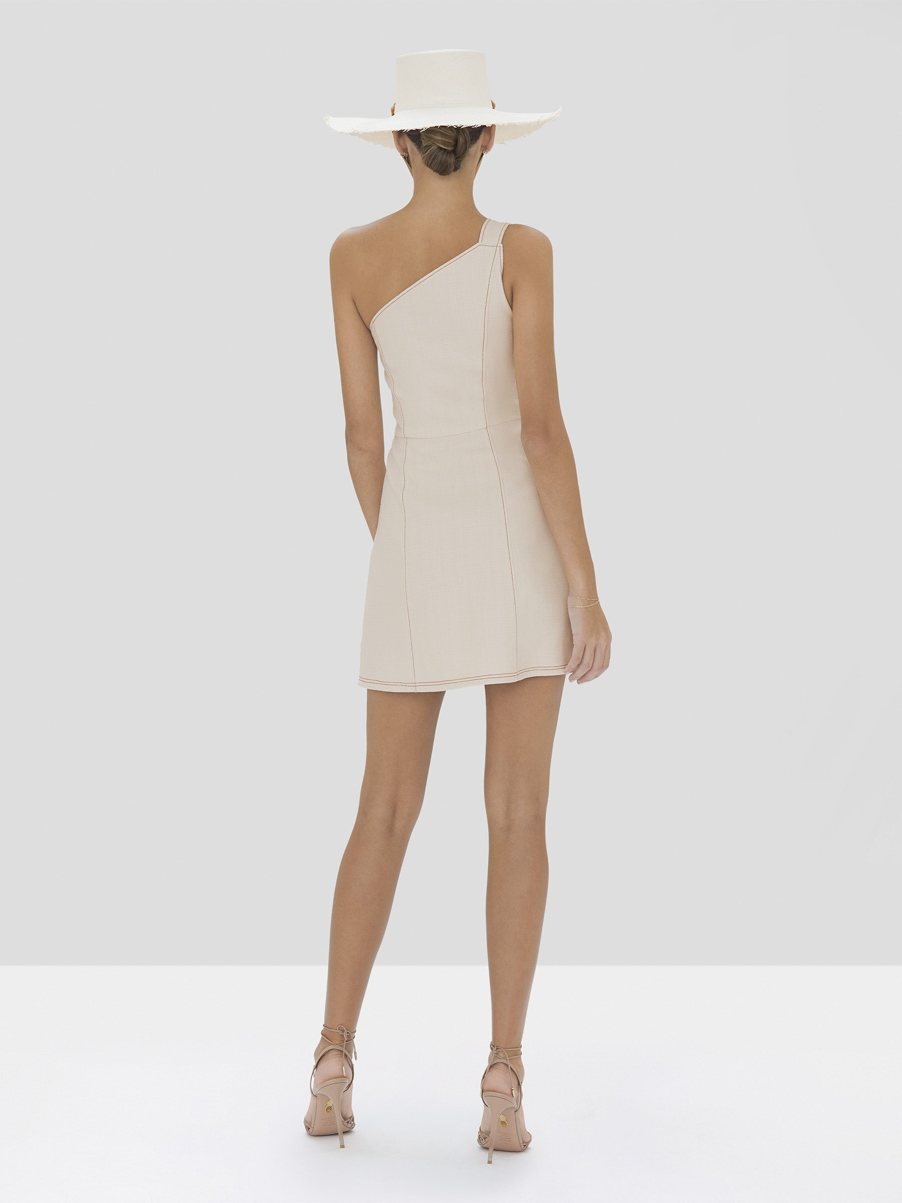 Alexis Alonsa Dress in Ivory from Spring Summer 2020 Collection - Rear View