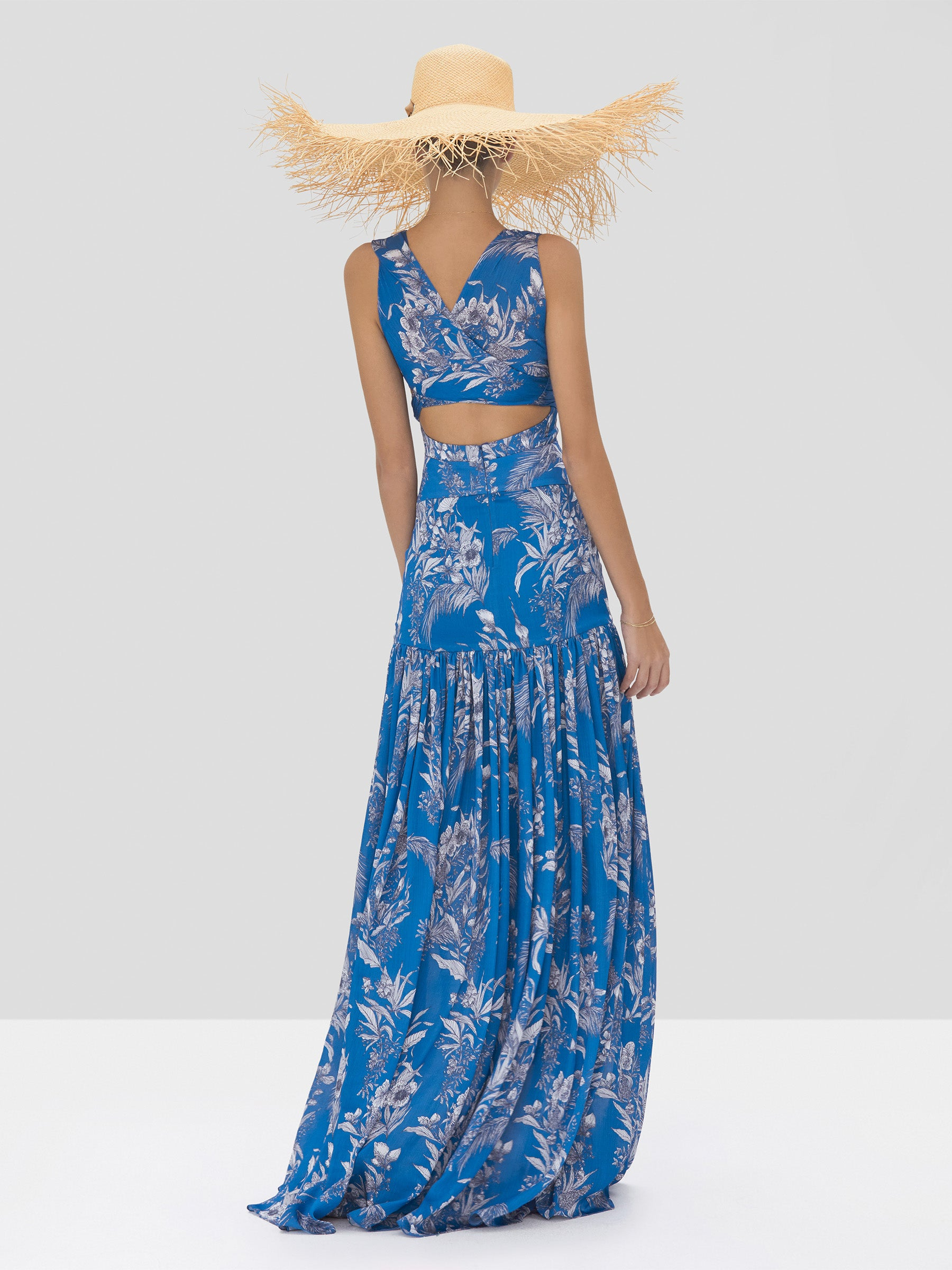 Alexis Belaya Dress in Blue Palm from Spring Summer 2020 Collection - Rear View