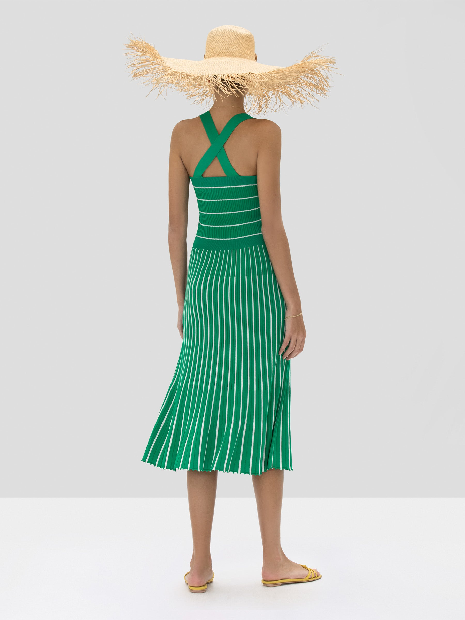 Alexis Bess Dress in Green and White Stripes from the Spring Summer 2020 Collection - Rear View