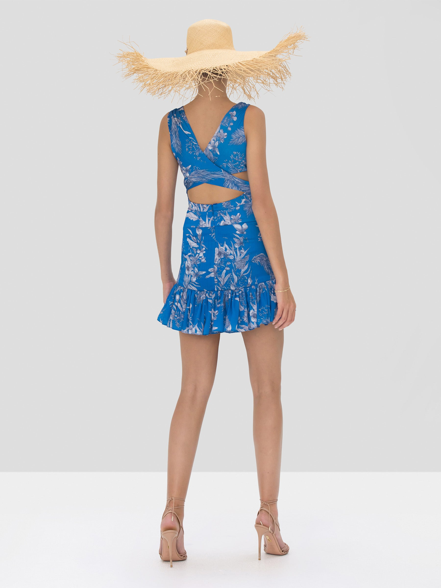 Alexis Cassara Dress in Blue Palm from Spring Summer 2020 Collection - Rear View