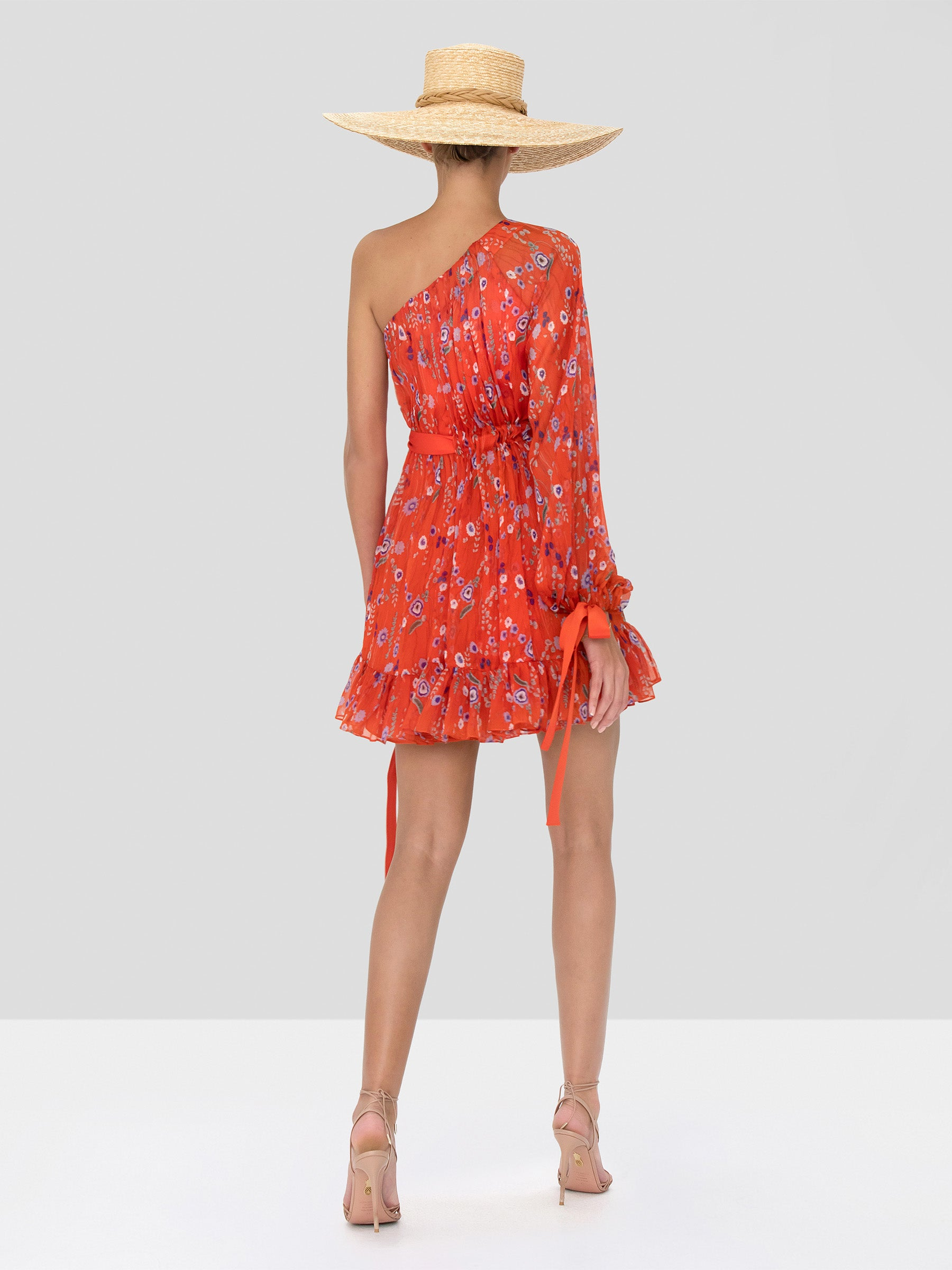 Alexis Edyta Dress in Red Bouquet from Spring Summer 2020 - Rear View