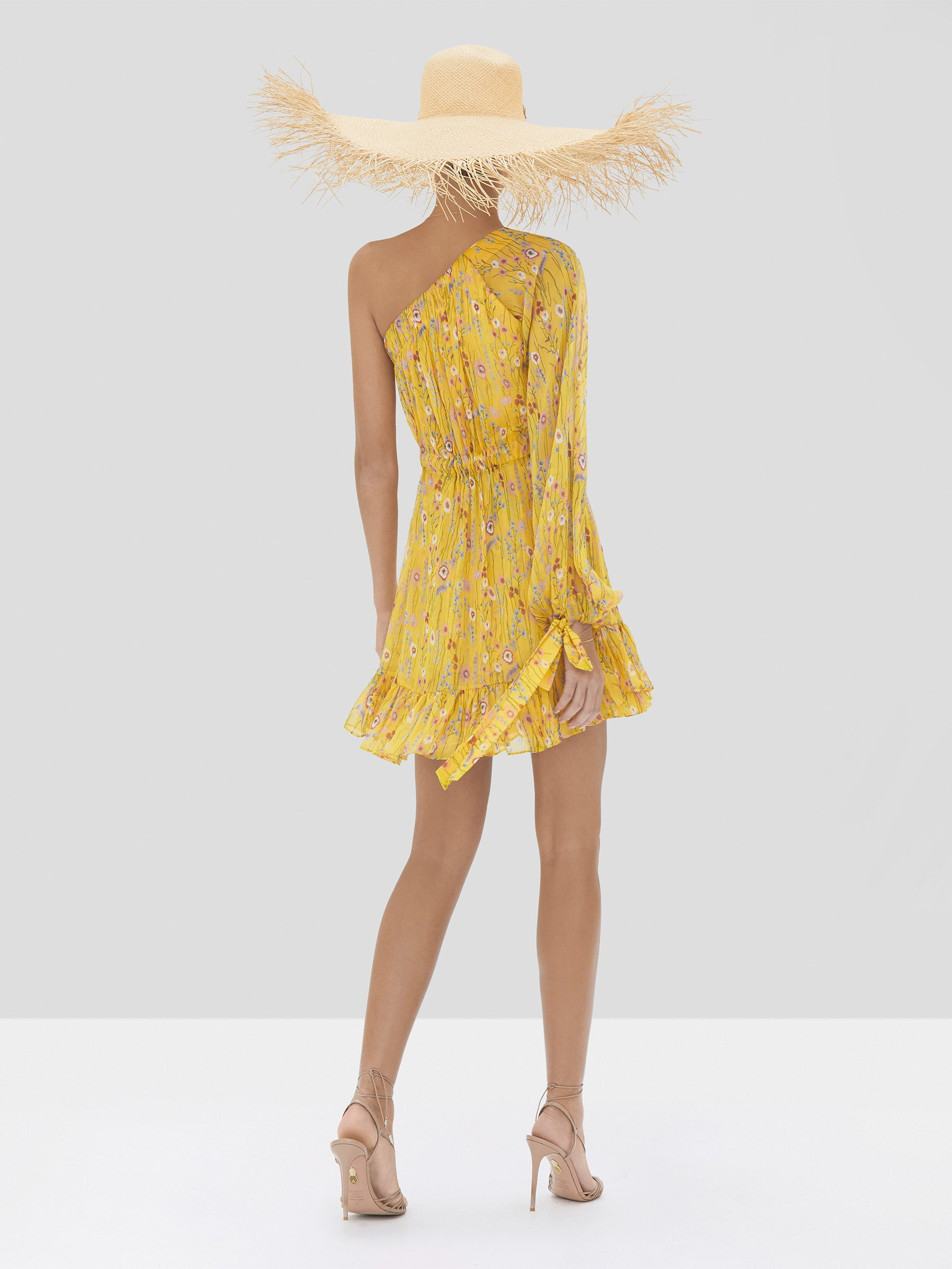 Alexis Edyta Dress in Sunrise Bouquet from Spring Summer 2020 - Rear View
