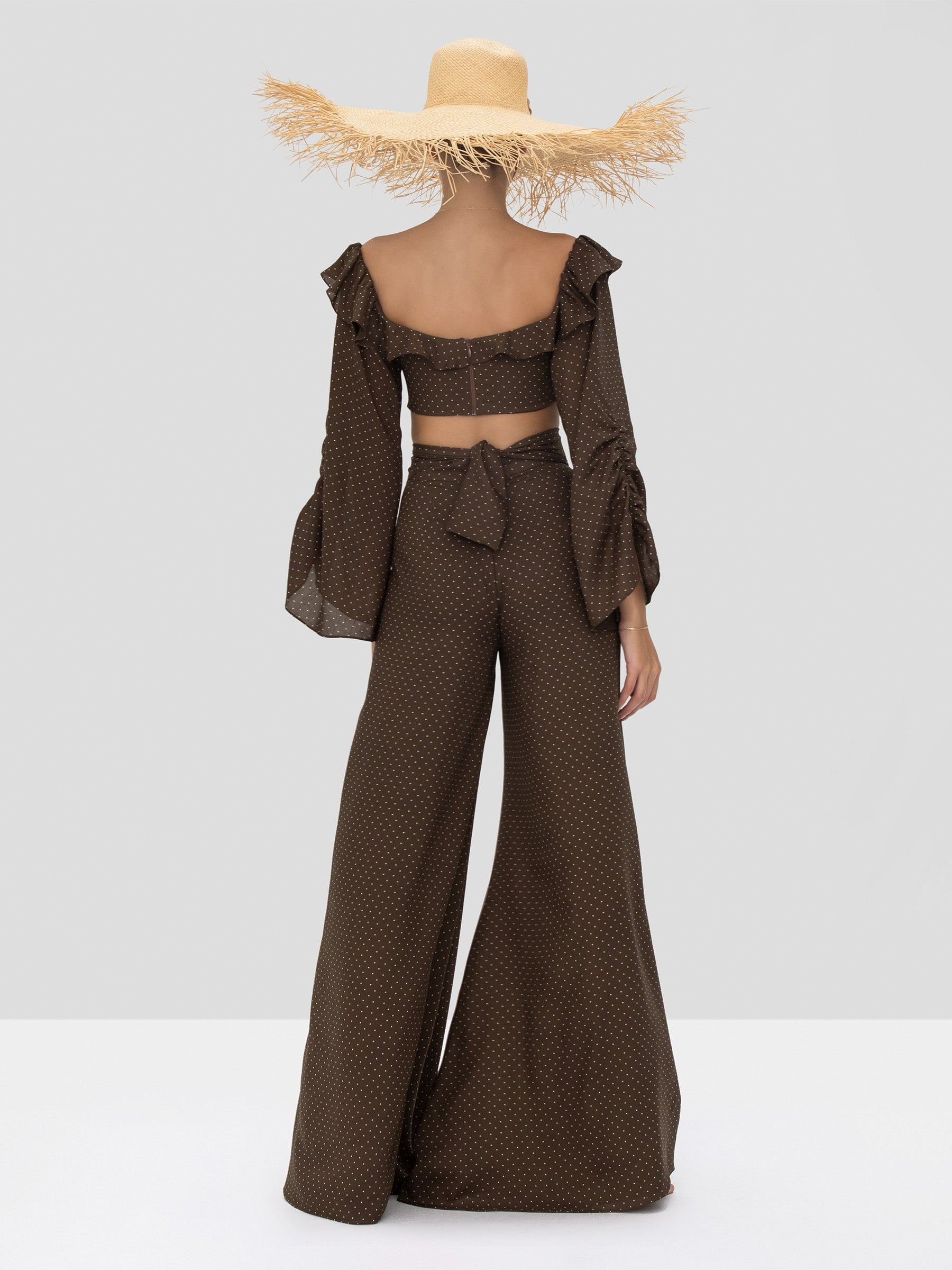 Alexis Antonin Pant and Ewa Crop Top in Mocha Dot Linen from the Spring Summer 2020 Collection - Rear View