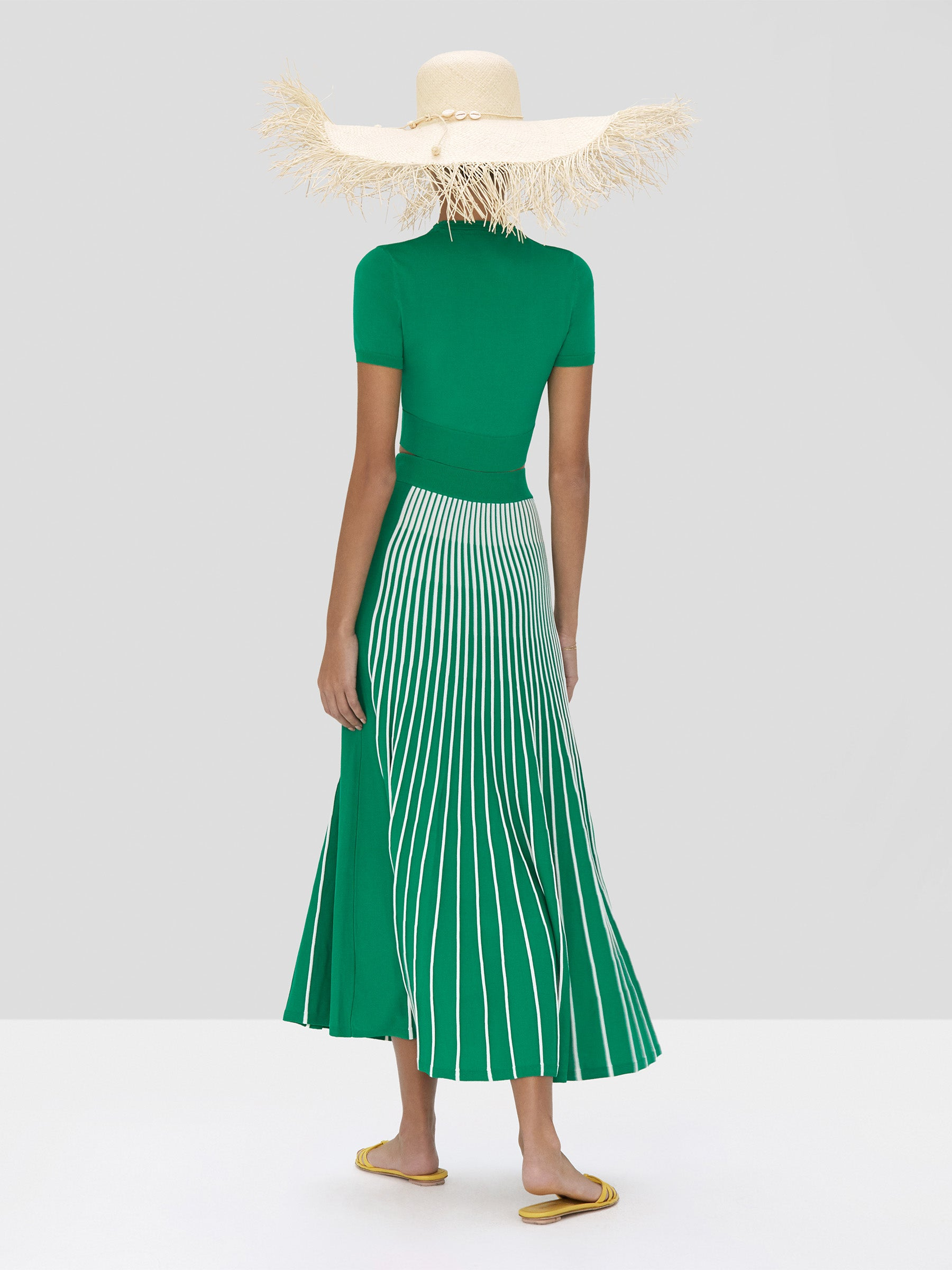 Alexis Finzi Crop Top in Green and Vani Skirt in Green and White Stripes from Spring Summer 2020  - Rear View