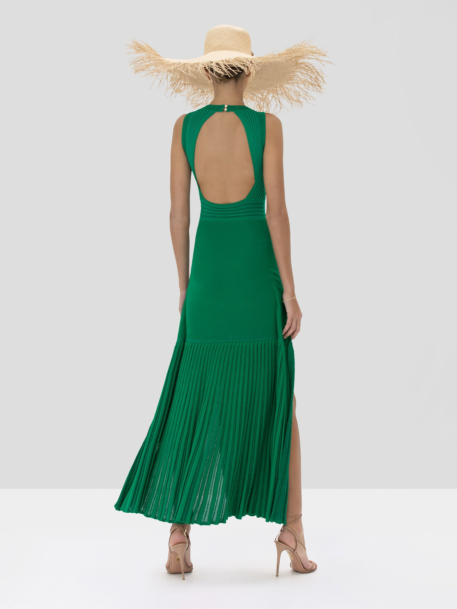 Alexis Gara Dress in Green from the Spring Summer 2020 Collection - Rear View