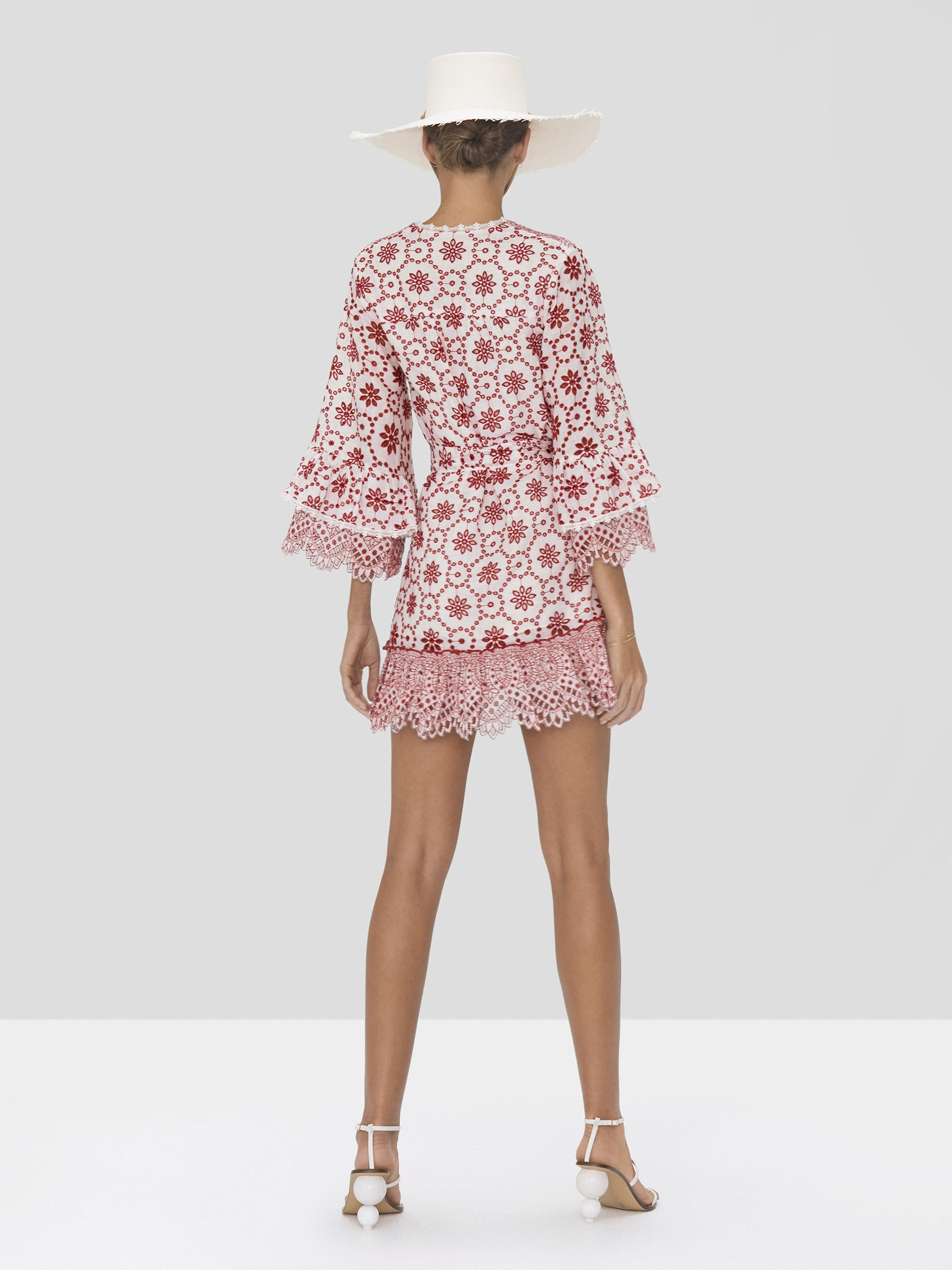 Alexis Gladys Dress in Berry Eyelet Embroidery from Spring Summer 2020 - Rear View