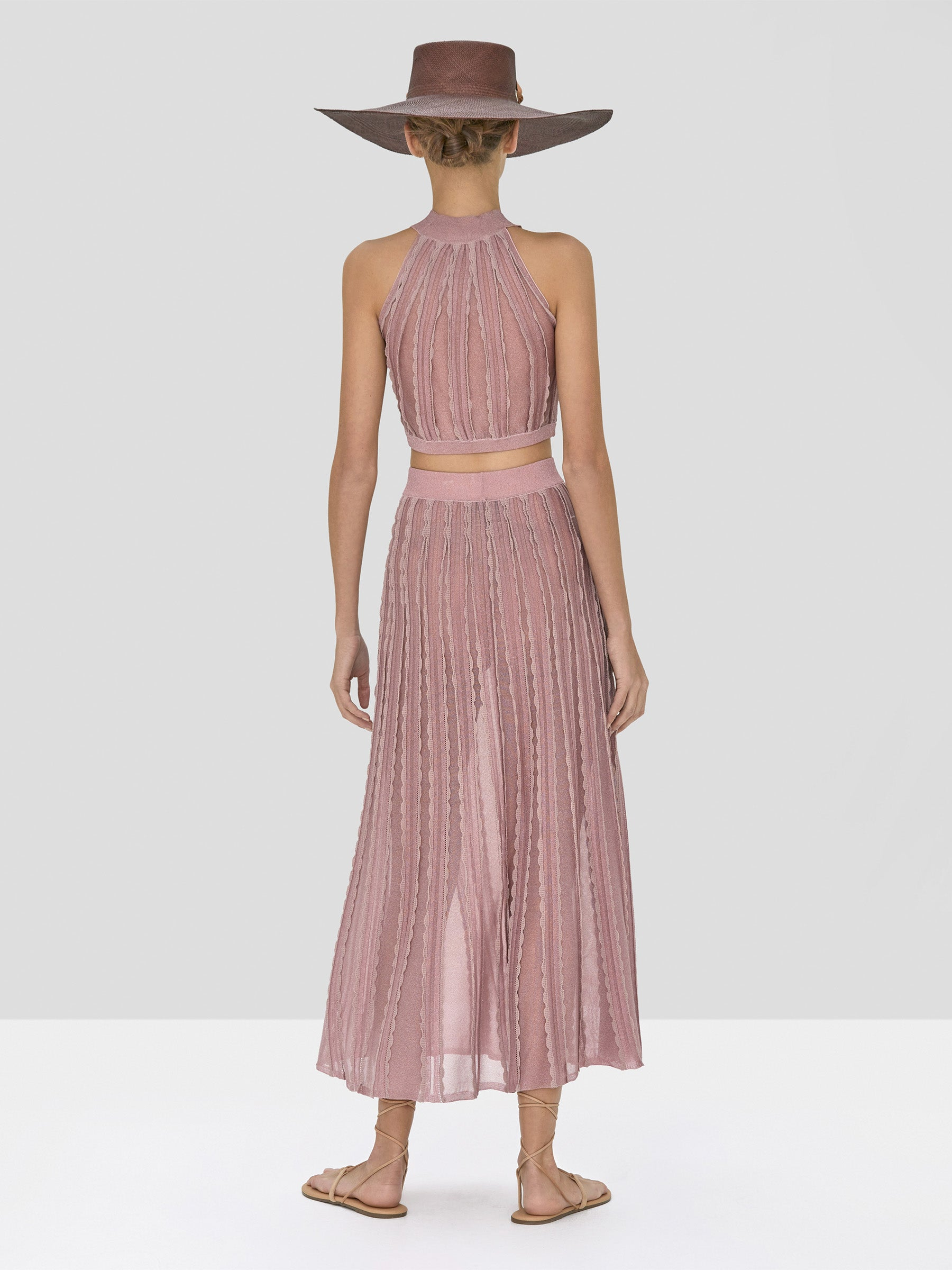 Alexis Keva Top and Zea Skirt in Blush from Spring Summer 2020 Collection  - Rear View