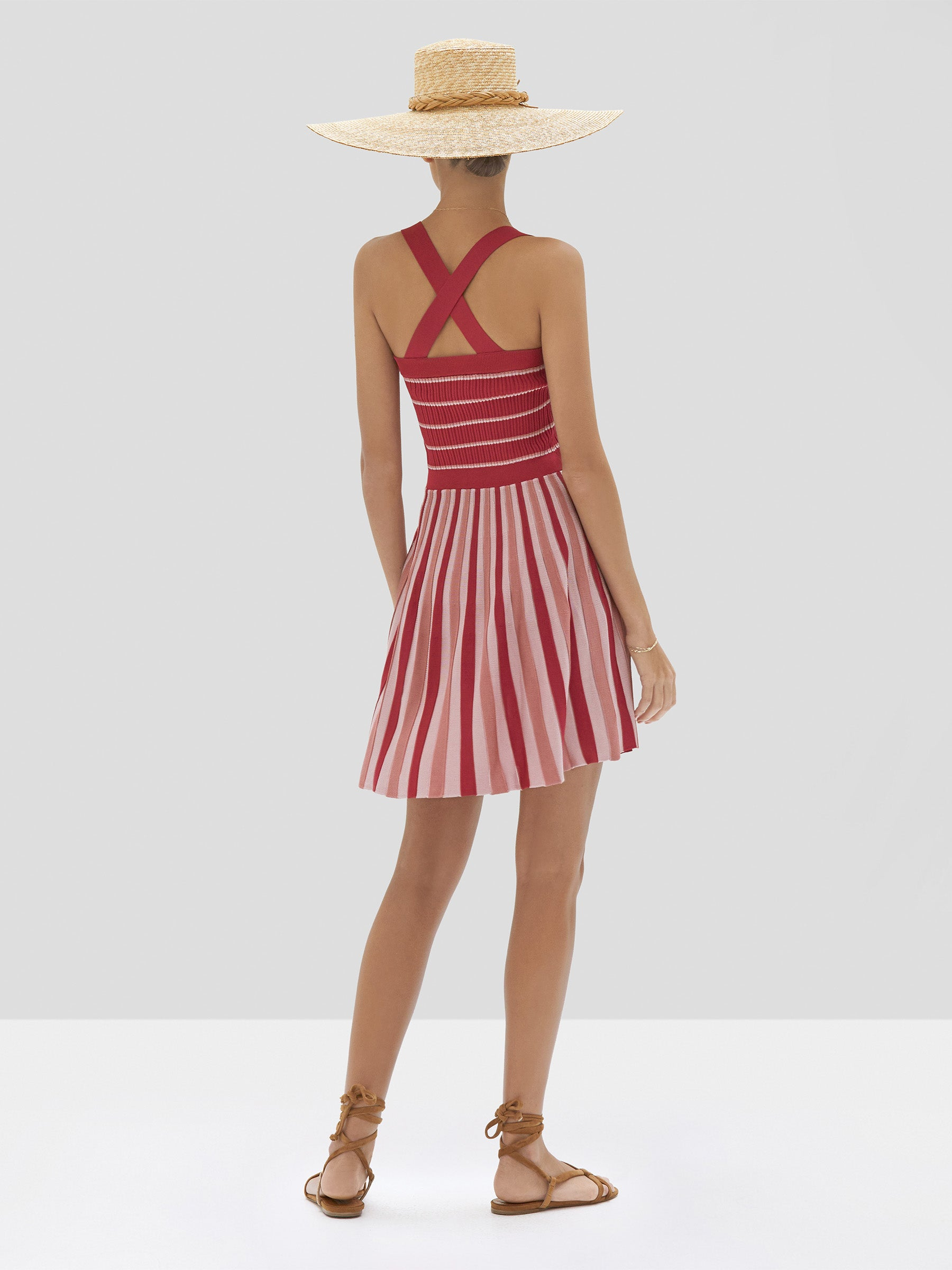 Alexis Lintov Dress in Mauve Stripes from Spring Summer 2020 Collection - Rear View