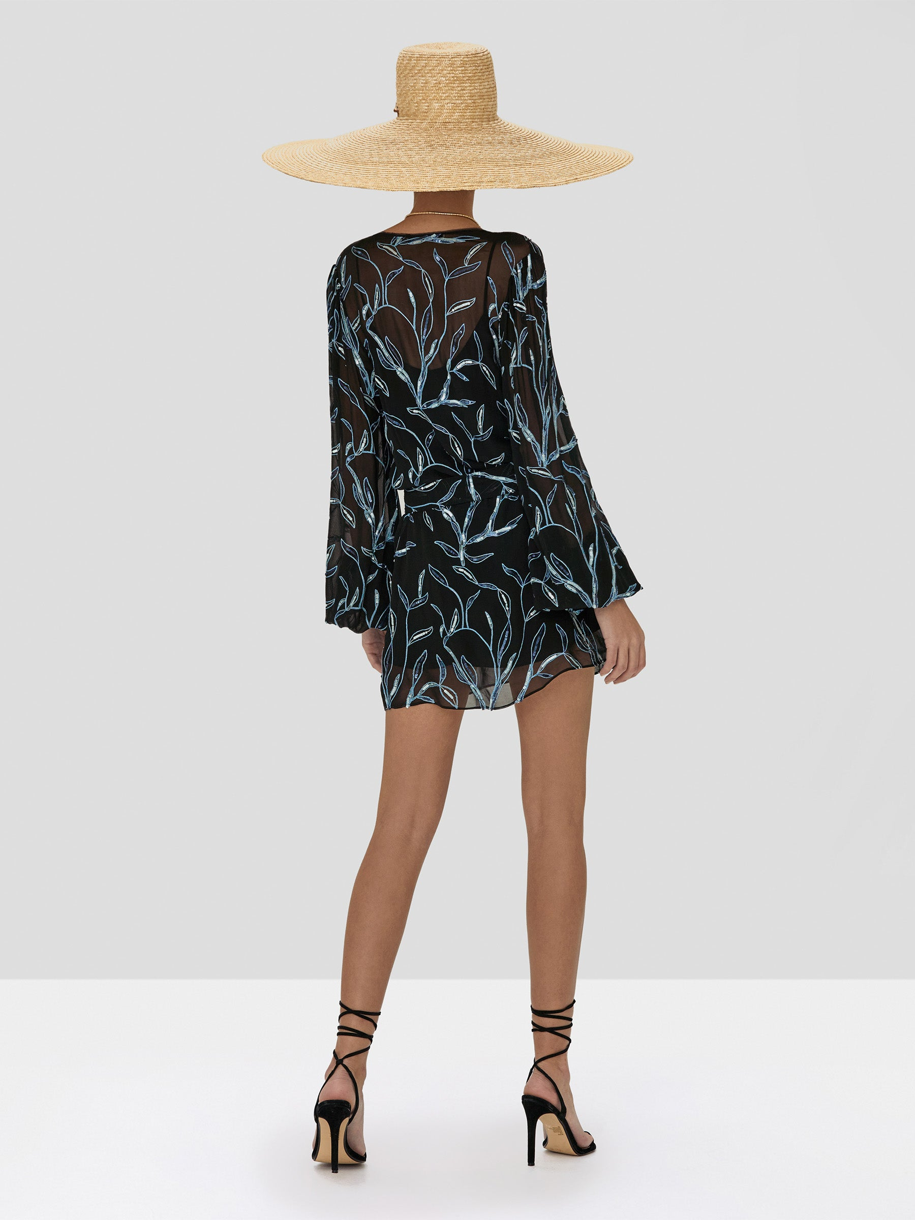 Alexis Lujana Dress in Black Sequin Embroidery from the Spring Summer 2020 Collection - Rear View