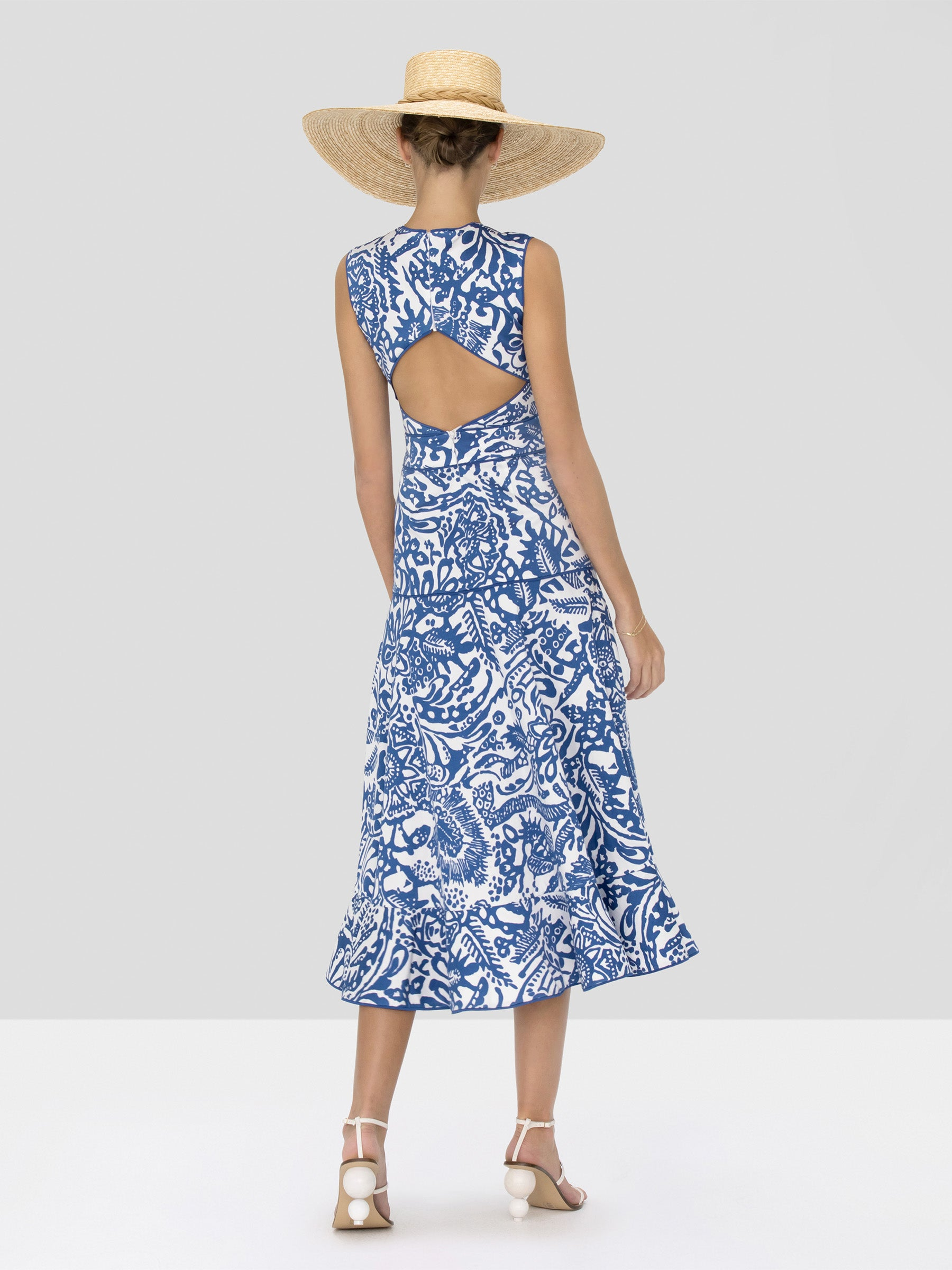 Alexis Marianna Dress in Tropical Blue from Spring Summer 2020 Collection - Rear View