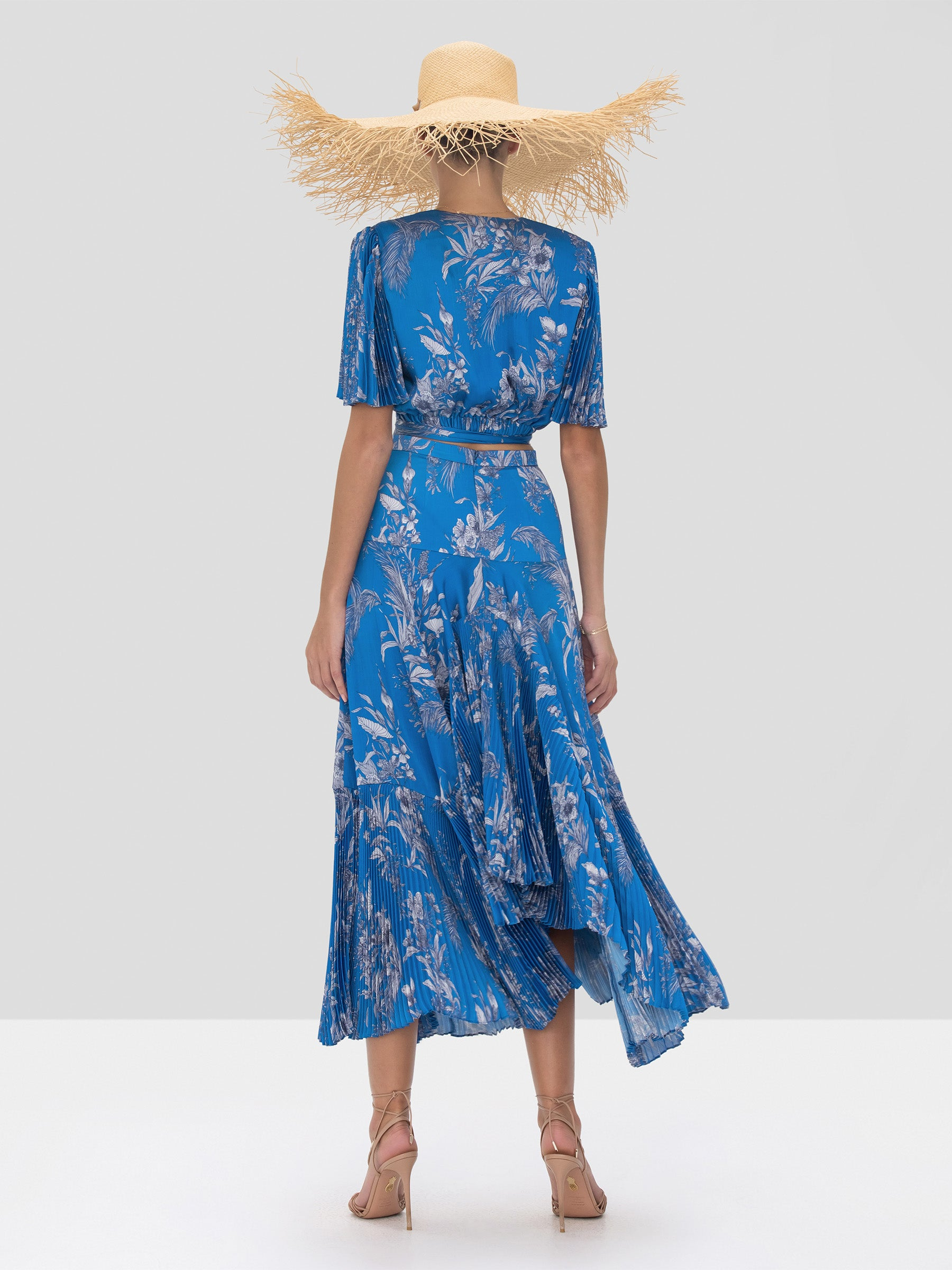 Alexis Rylie Top and Tarou Skirt in Blue Palm Spring Summer 2020 Collection - Rear View