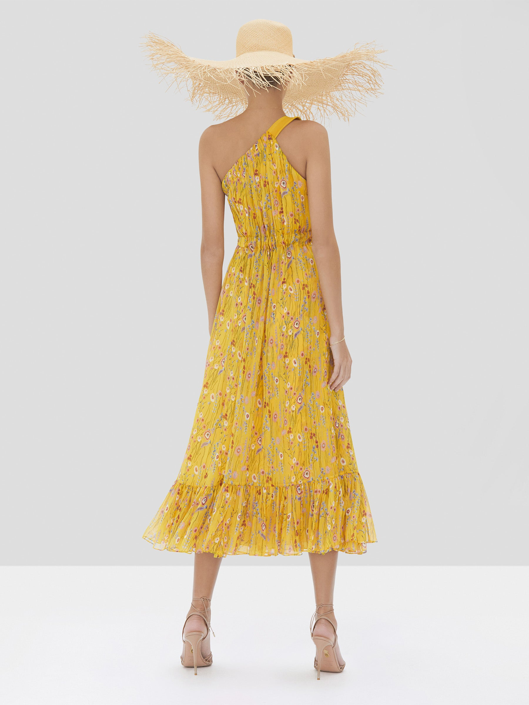 Alexis Teodora Dress in Sunrise Bouquet from Spring Summer 2020 Collection - Rear View