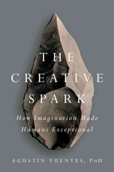 Creative Spark : How Imagination Made Humans Exceptional