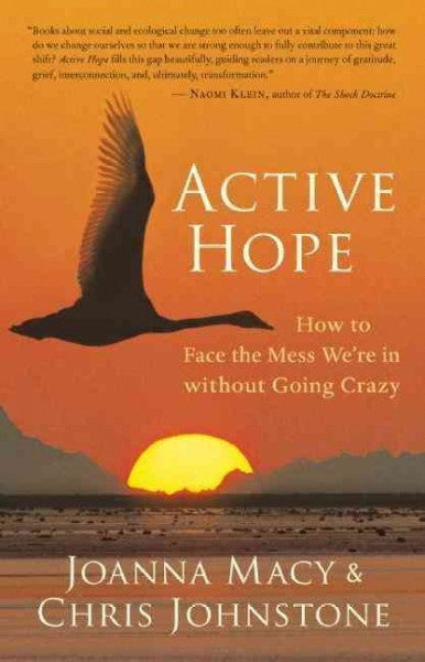 Active Hope : How to Face the Mess We're in Without Going Crazy