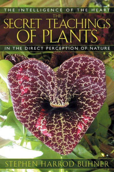 Secret Teachings Of Plants : The Intelligence Of The Heart In The Direct Perception Of Nature