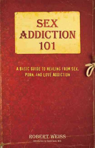 Sex Addiction 101 : A Basic Guide to Healing from Sex, Porn, and Love Addiction