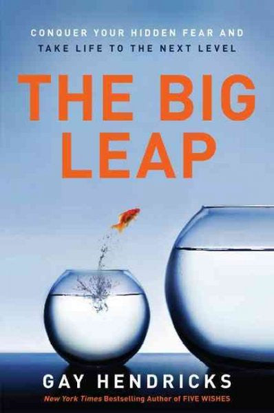 Big Leap : Conquer Your Hidden Fear and Take Life to the Next Level