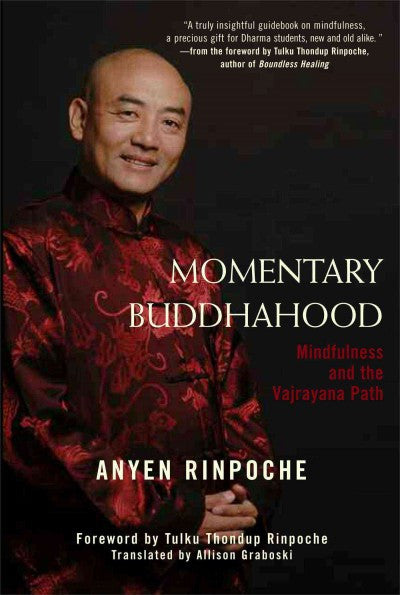 Momentary Buddhahood : Mindfulness and the Vajrayana Path