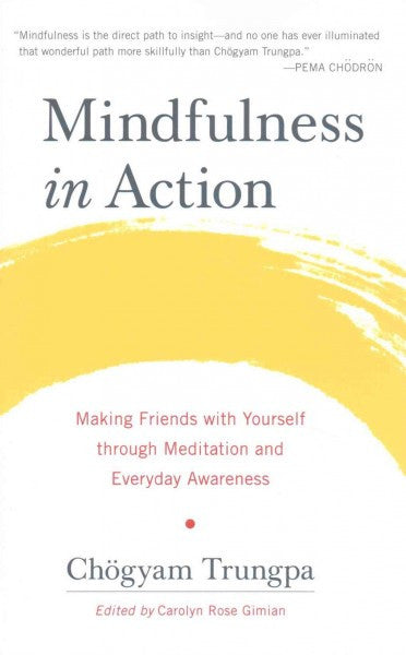 Mindfulness in Action : Making Friends with Yourself through Meditation and Everyday Awareness