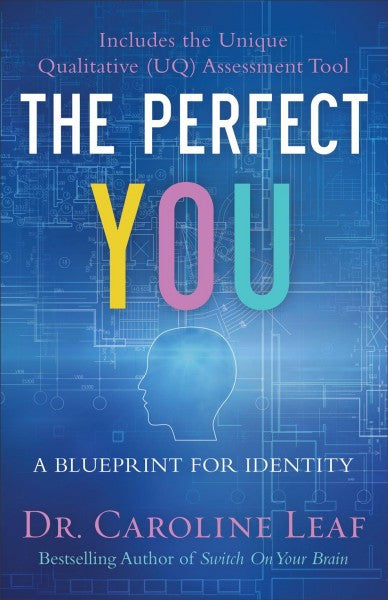 Perfect You : A Blueprint for Identity
