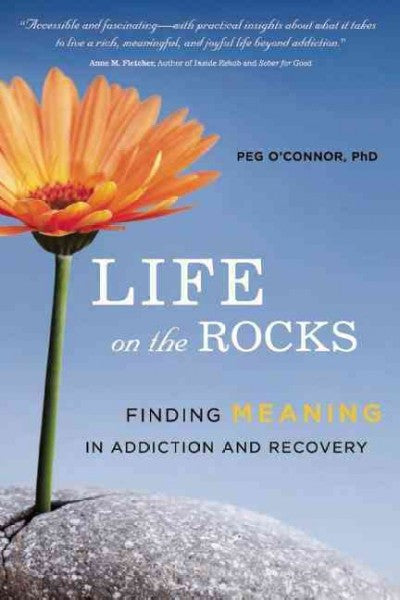 Life on the Rocks : Finding Meaning in Addiction and Recovery