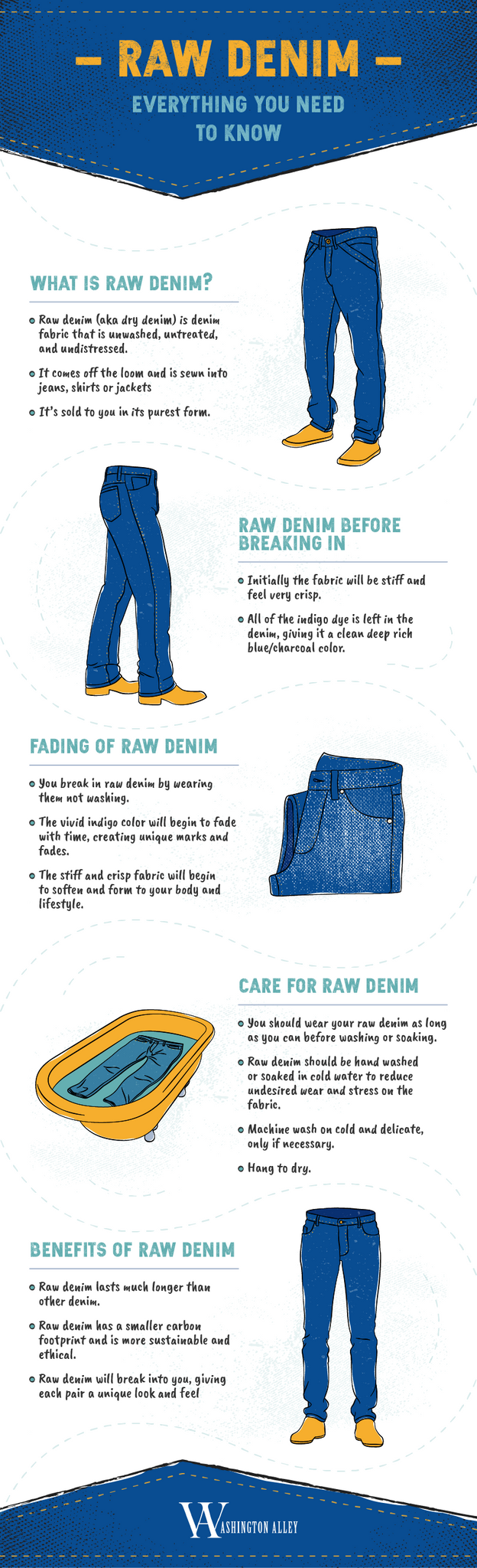 Raw Denim Infographic