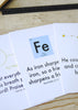 Science and Scripture Activity Kit