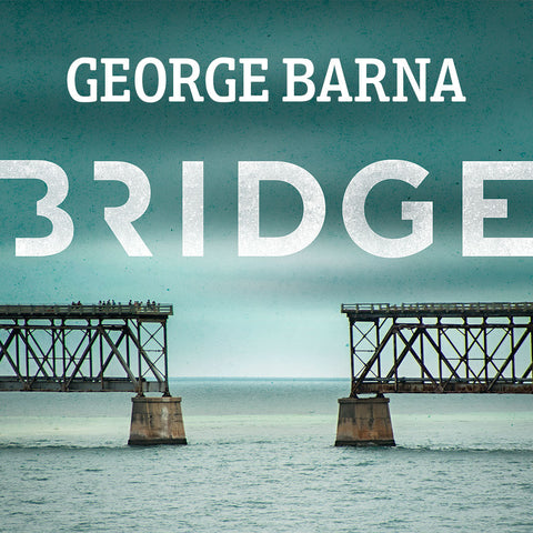 Why Is This Critical? | George Barna | Bridge 2015