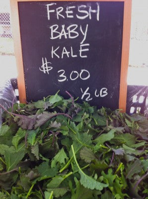Farmer's Market Baby Kale-American-Fitness-Couture