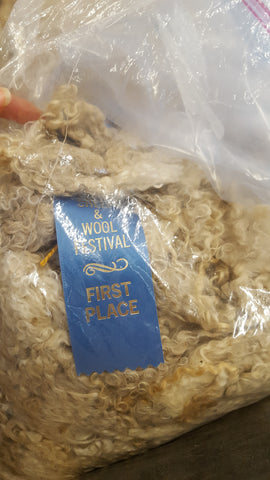 First Place Mohair Rhinebeck 2017 Fleece Sale