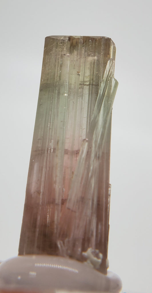 Bi-Colored Tourmaline,  California