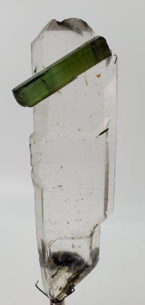 Double Terminated Tabby Quartz with Tourmaline