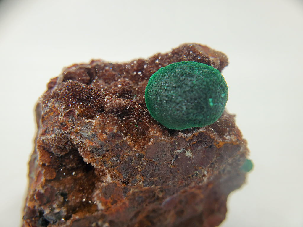 Botryoidal Malachite with Druzy Quartz, Morocco