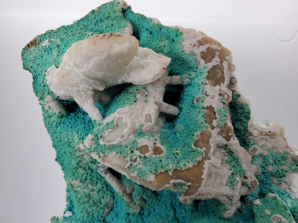 Chrysocolla with Quartz (Congo)