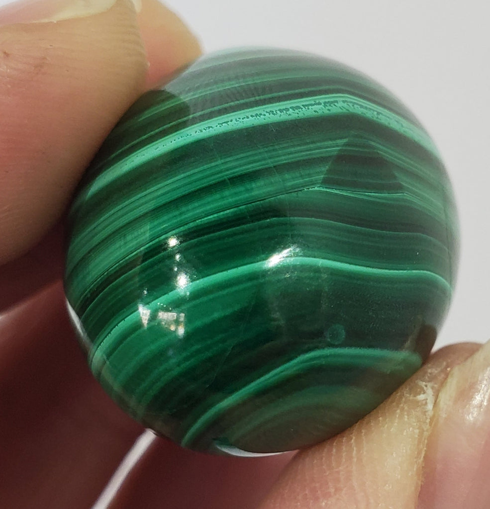 Malachite Egg, Congo