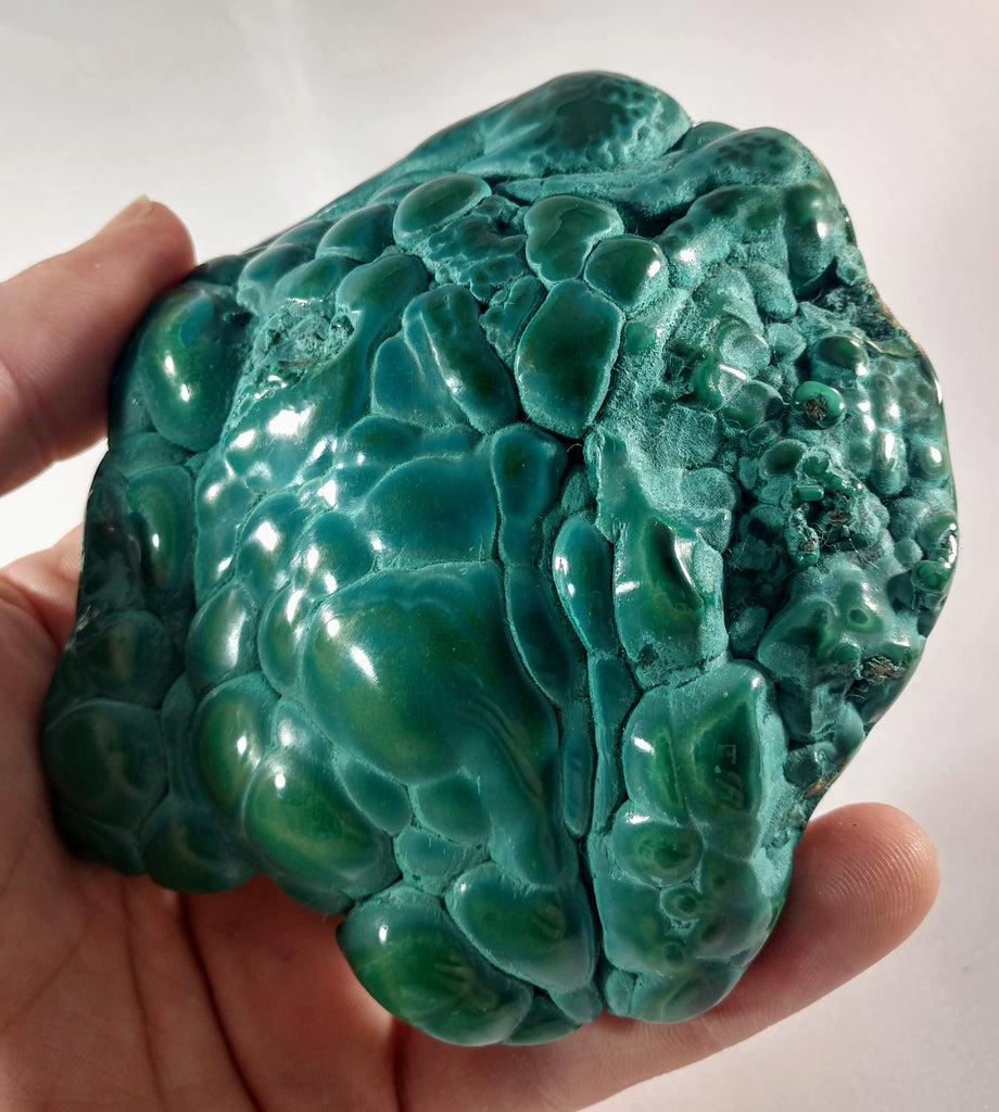 Botryodial Malachite from the Congo
