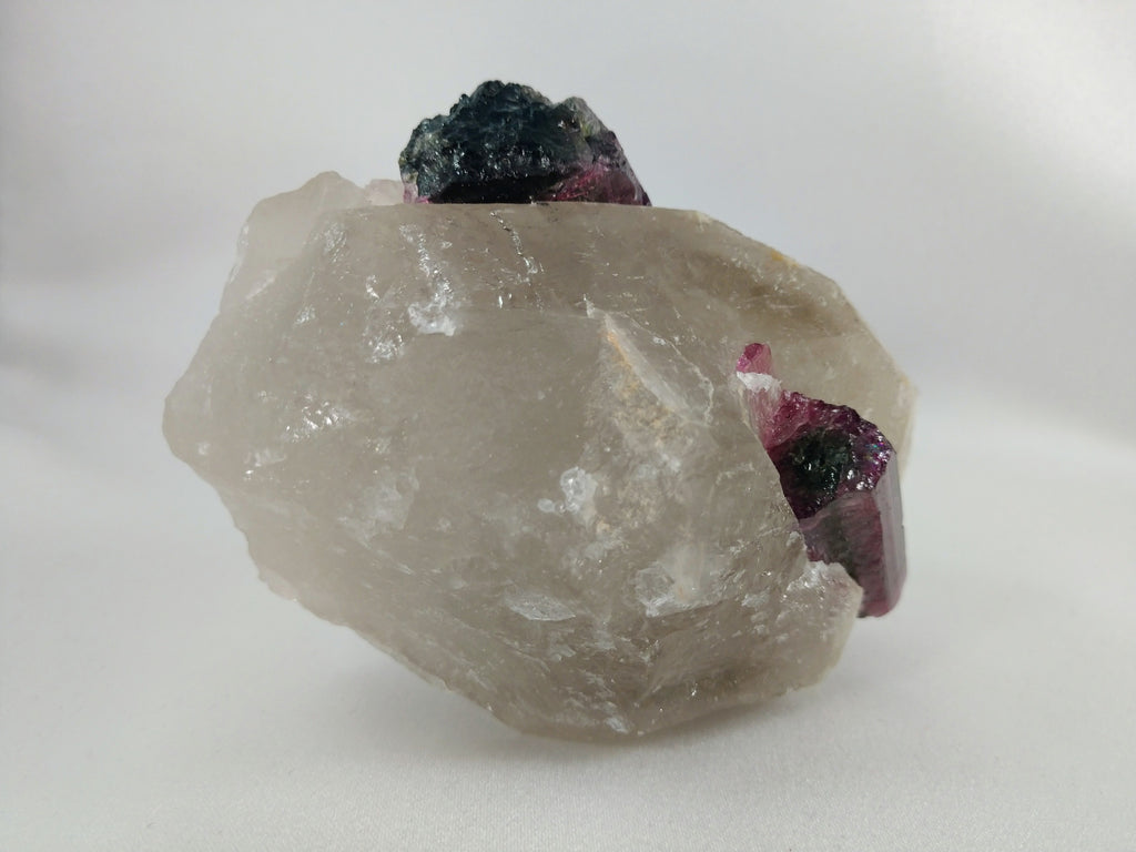 Bi-Color Tourmaline in Quartz