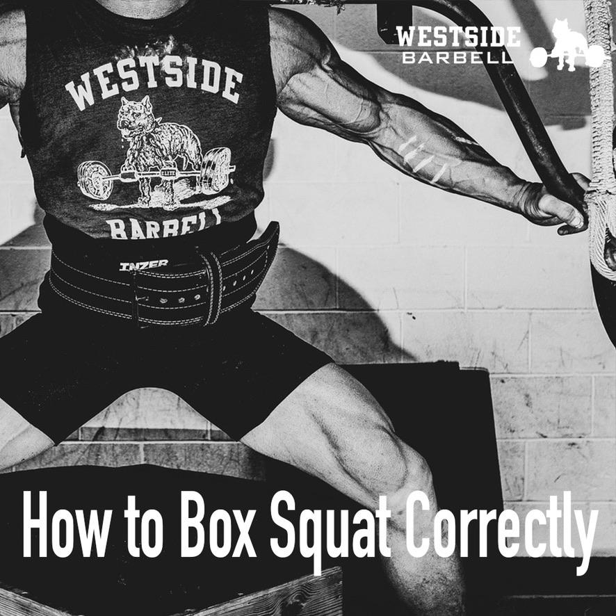 How to Box Squat Correctly