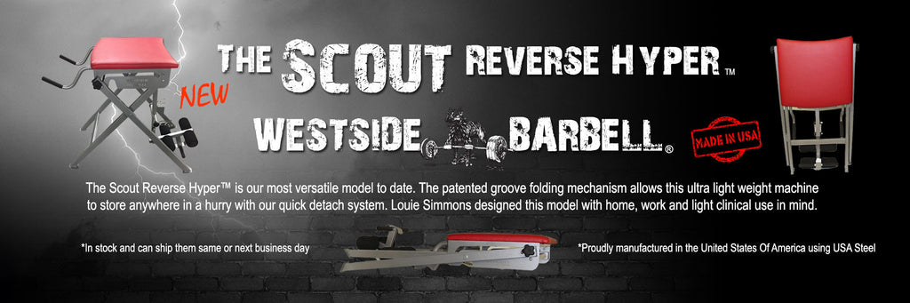https://westside-barbell.com/products/the-scout-reverse-hyper