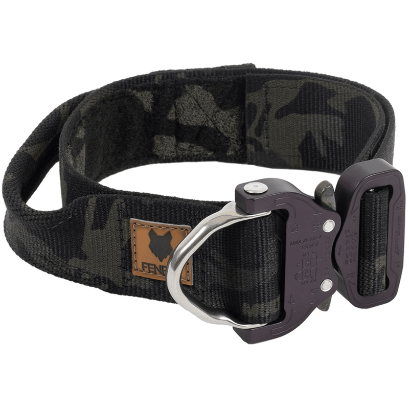 WSBB Dogs - Fenrir Canine Odin Dog Collar