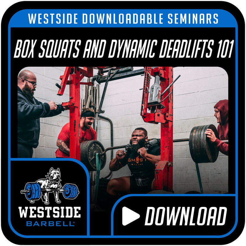Box Squats and Dynamic Deadlifts 101